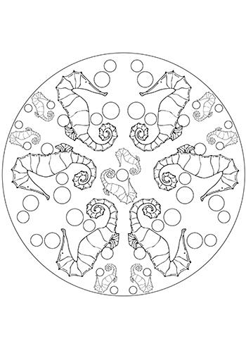 Free Printable Seahorse And Bubbles Mandala  Coloring Page