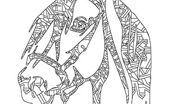 Free Printable Fun Intricate Mandala Horse Head Adult Coloring Page